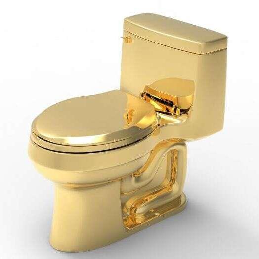 gold toilet seat