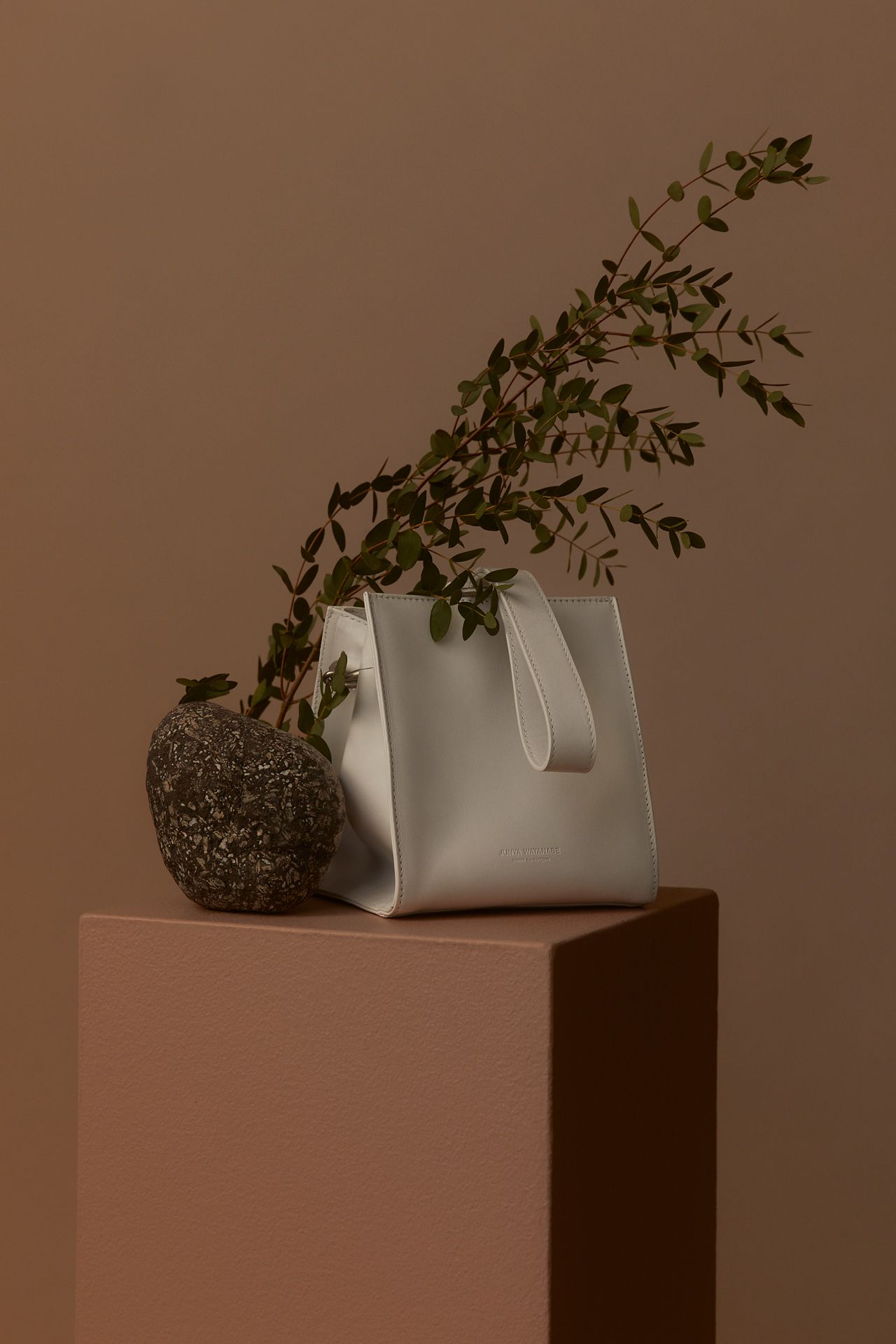 white leather purse with branch of eucalyptus next to it on brown block on brown background photographed by Kelly Jacob for LEV
