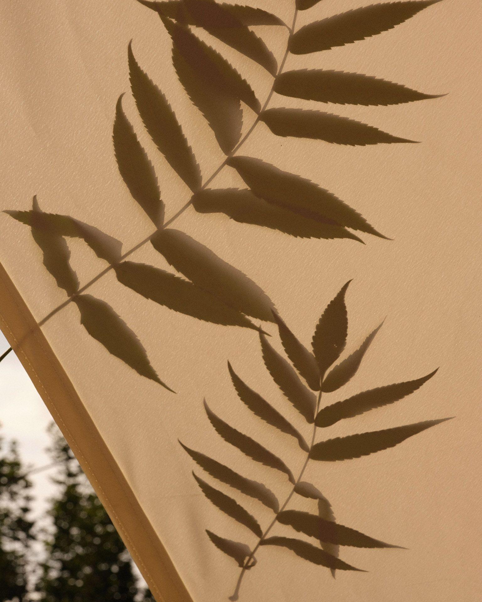 leaf shadows on fabric by Maxyme G Delisle for Flanelle Magazine
