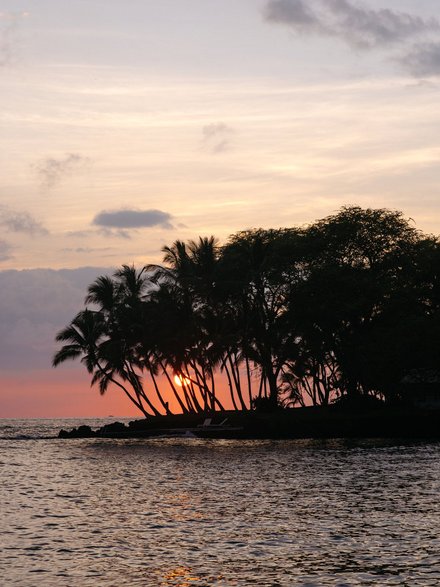 sunset behind palm trees by Alexi Hobbs in Hawaii for enRoute