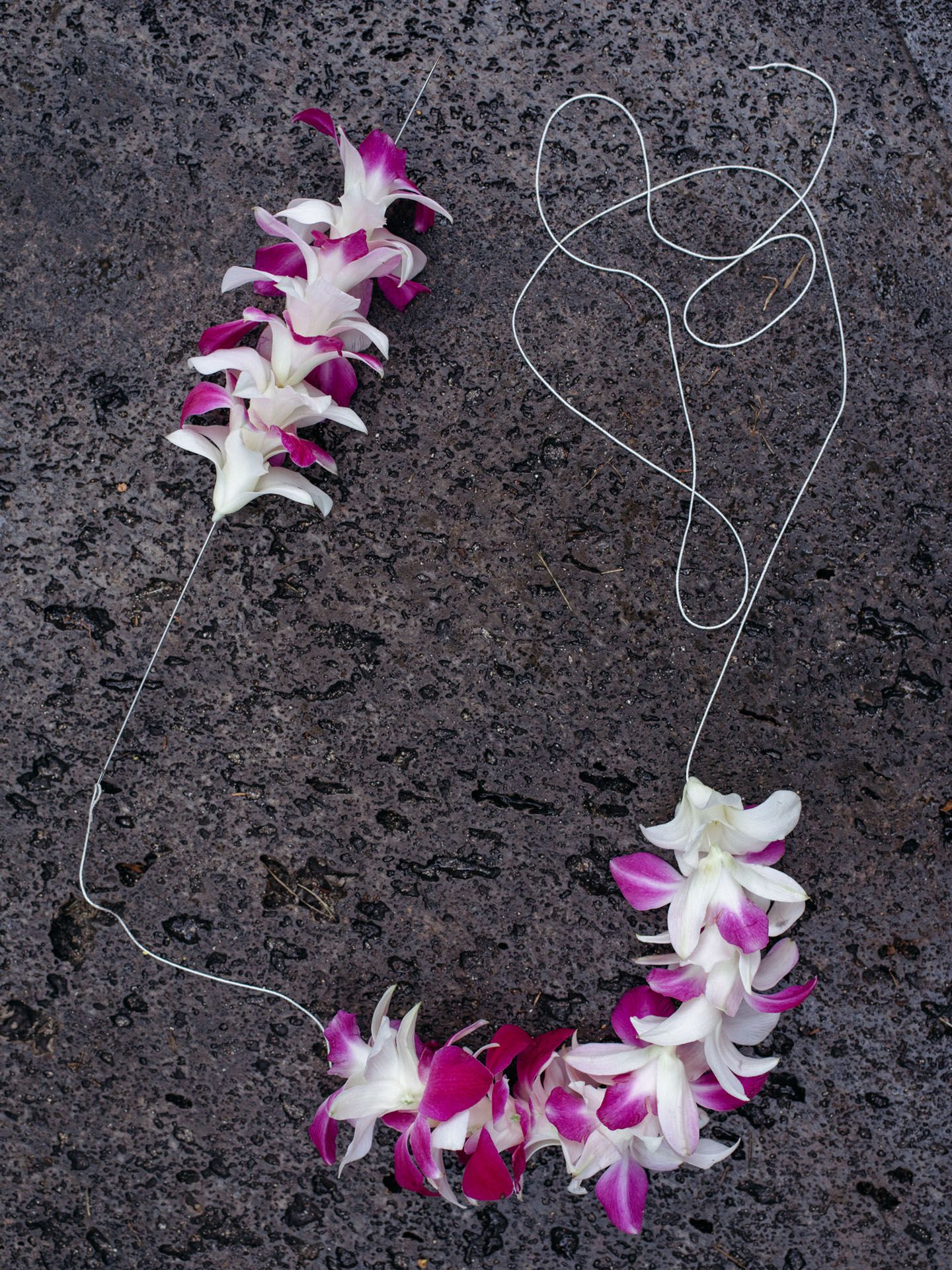 orchids flowers getting threaded with needle to make a lei flower necklace by Alexi Hobbs in Hawaii for enRoute Magazine