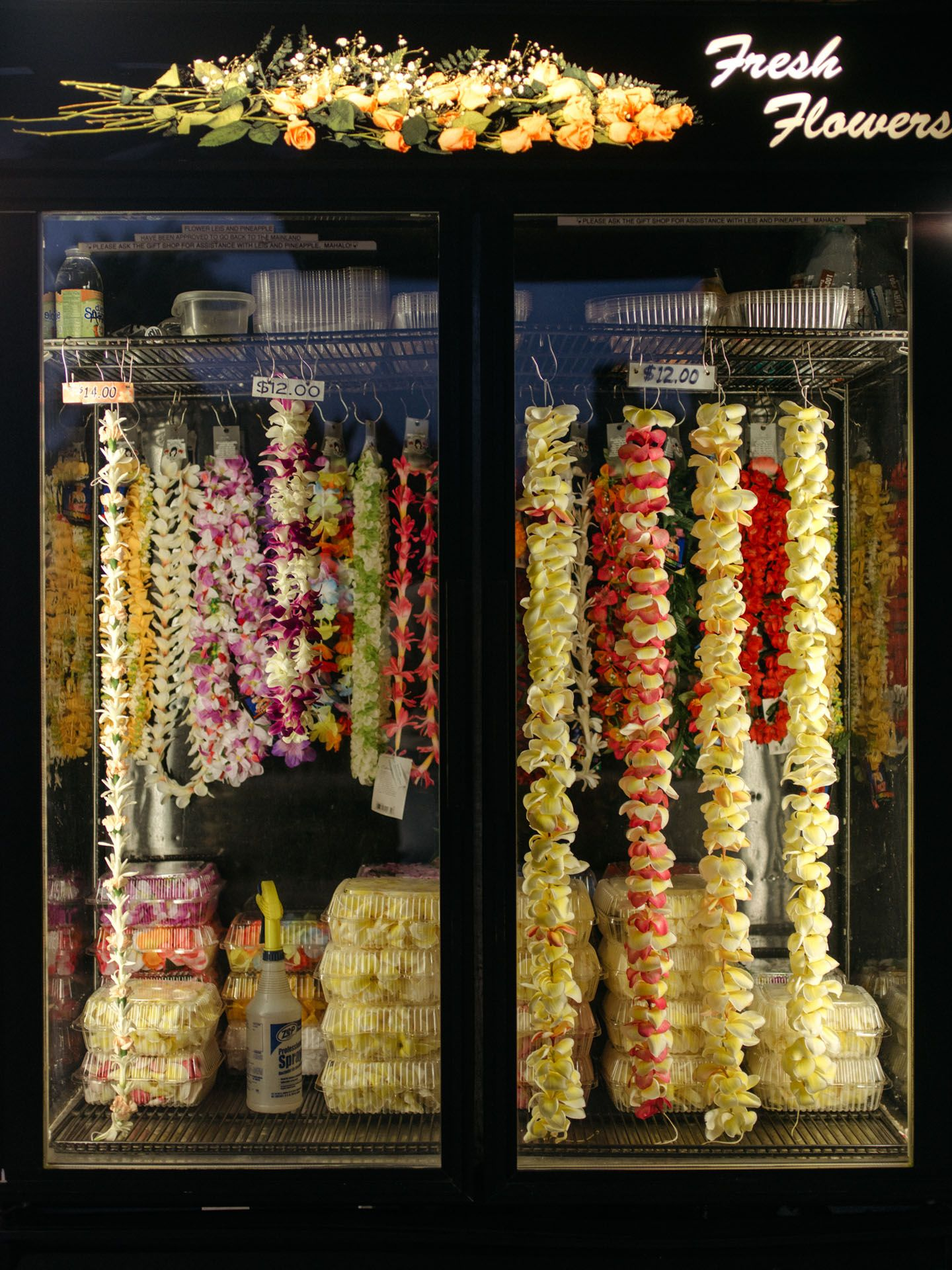 necklace of fresh flowers leis in fridge by Alexi Hobbs in Hawai'i for enRoute Magazine
