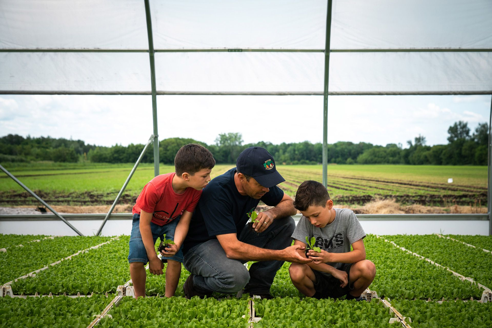 father showing young plants to both his sons crouching on the ground by Bruno Florin for Sollio Agriculture