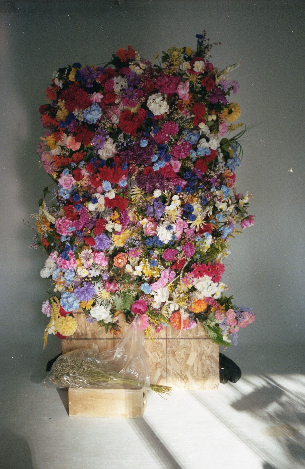 fake flower covered wall created by Studio TB for shooting for Nouveau Projet 17 with Jean Michel Blais