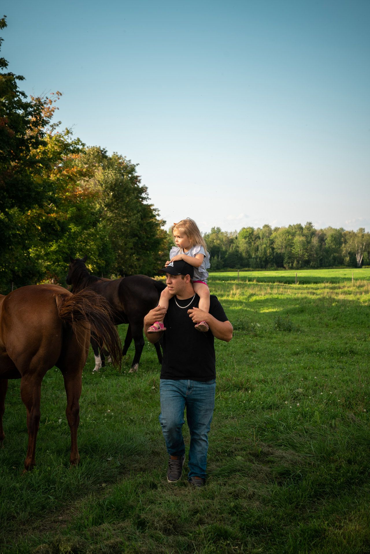 father walking through field with daughter on his shoulder looking at horses by Bruno Florin for Sollio Agriculture