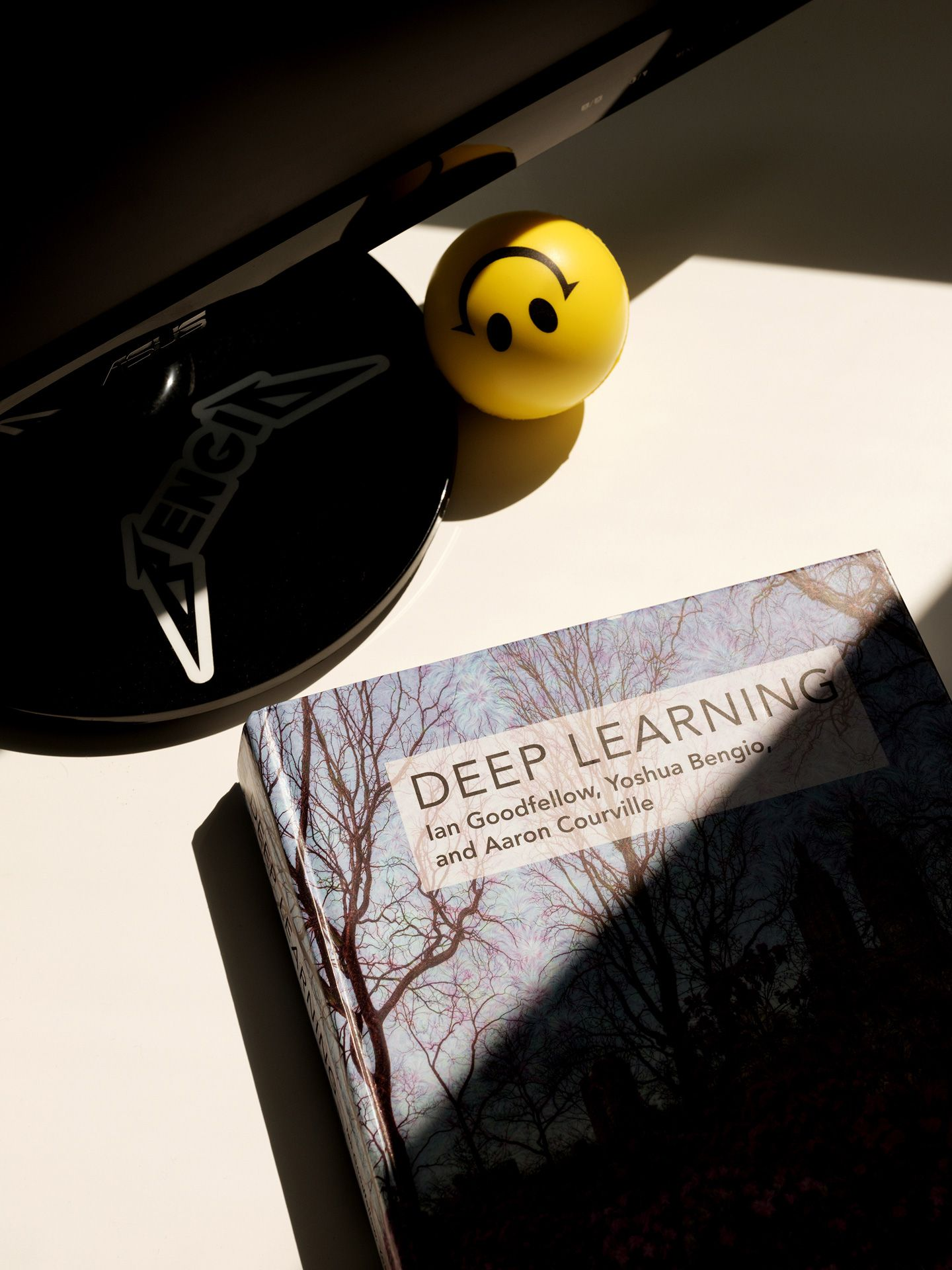 """book called """"deep learning"""" with stress ball in the sun by Guillaume Simoneau for Element AI with Fortune Magazine"""