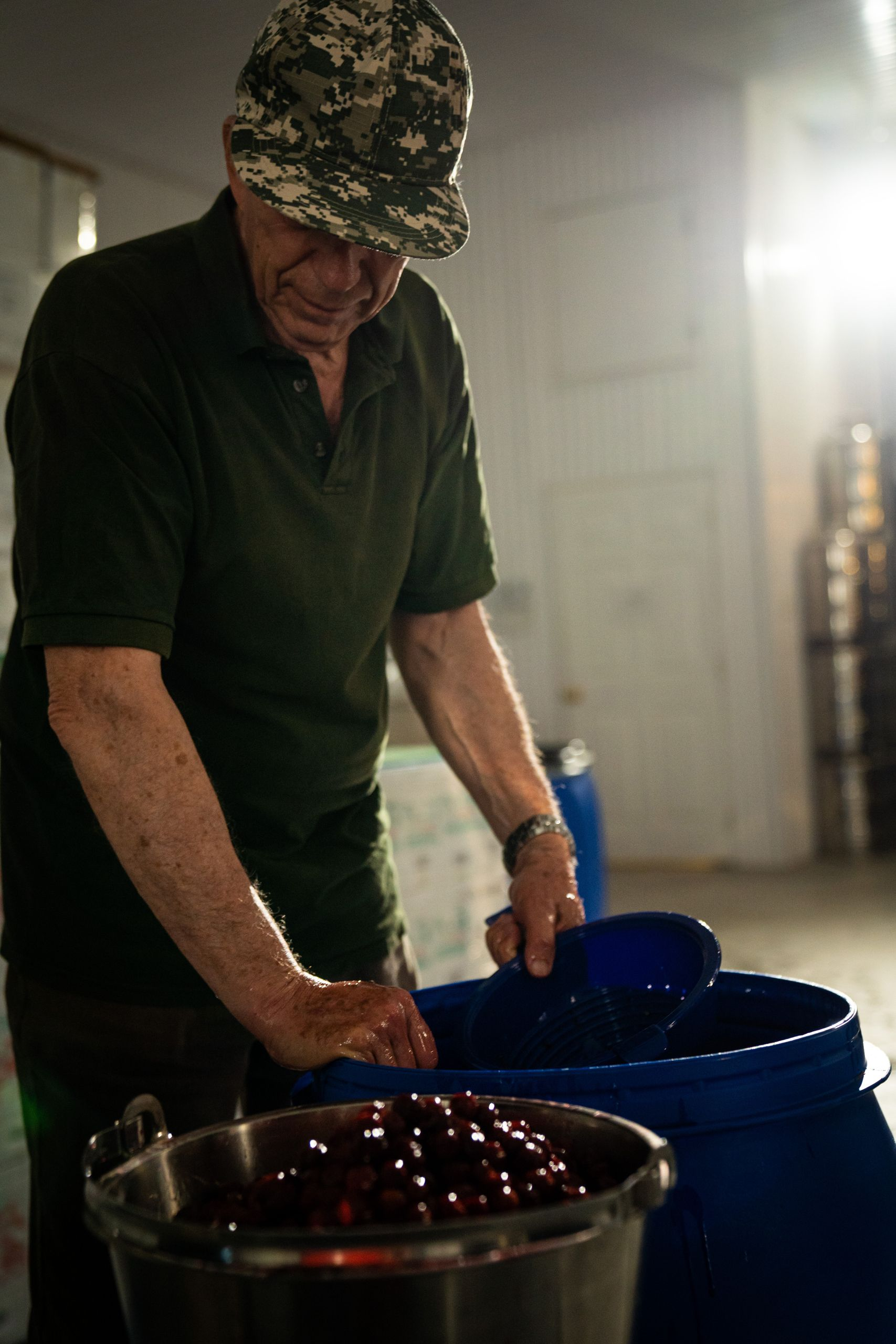 Photo of Jonas Sivo preparing the fruits for the alcohol fermentation in his stable.
