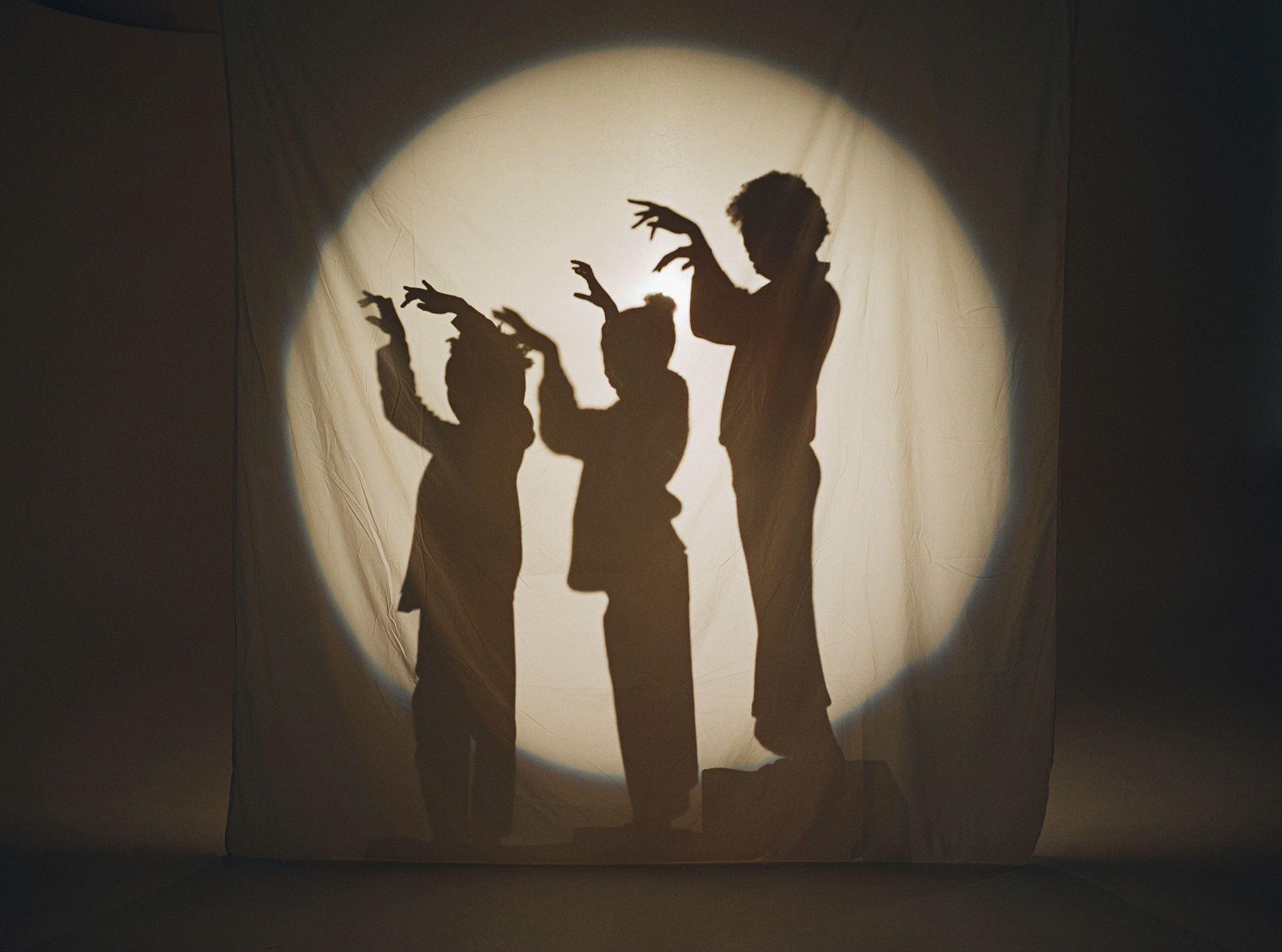 Kids doing shadow shows with their hands. We only see their shadow in a circle of light behind a hung white fabric.