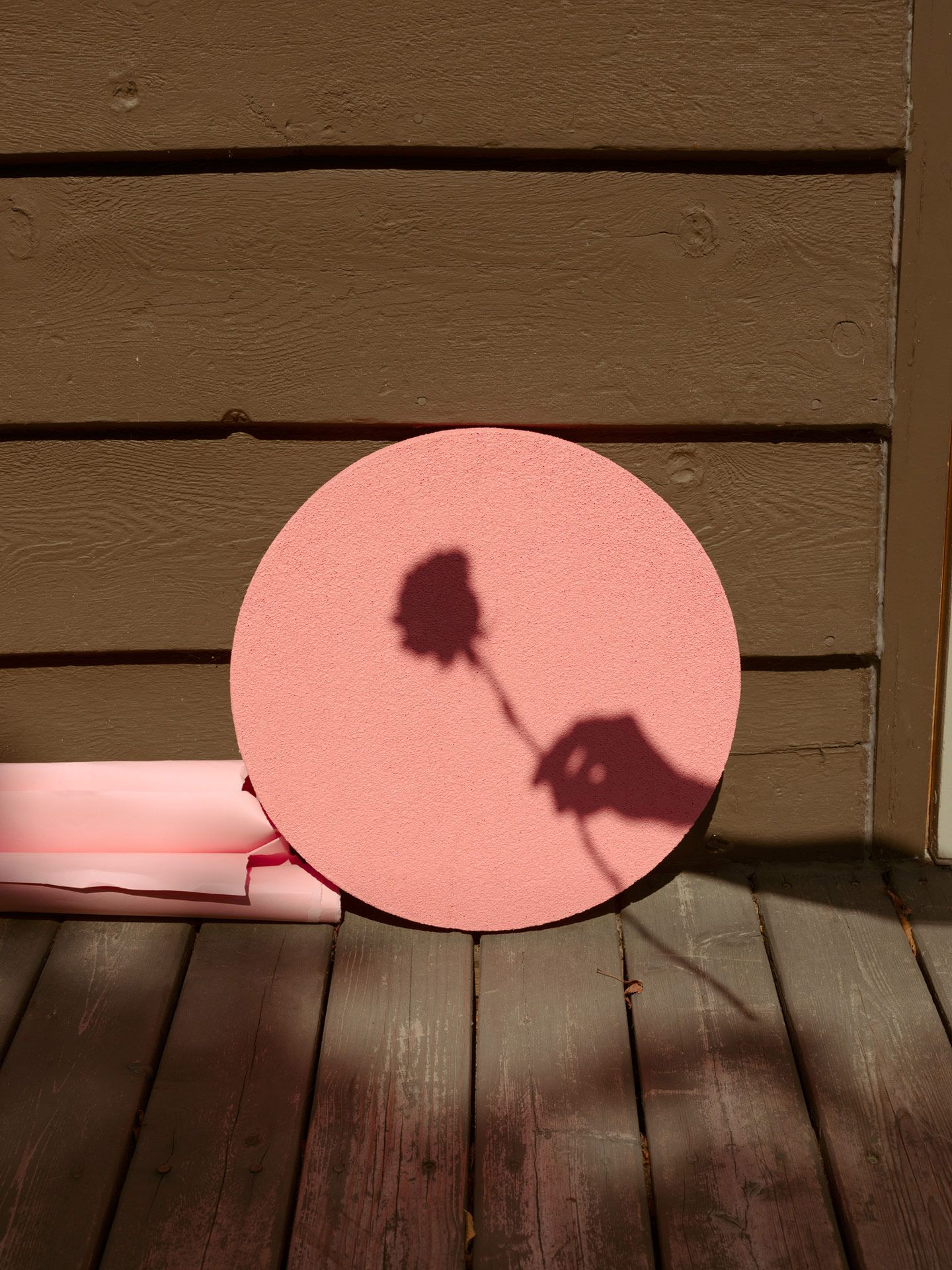 shadow of hand holding rose on pink painted wood circle beside wall by Maxyme G Delisle for Fanny Bloom Liqueur album