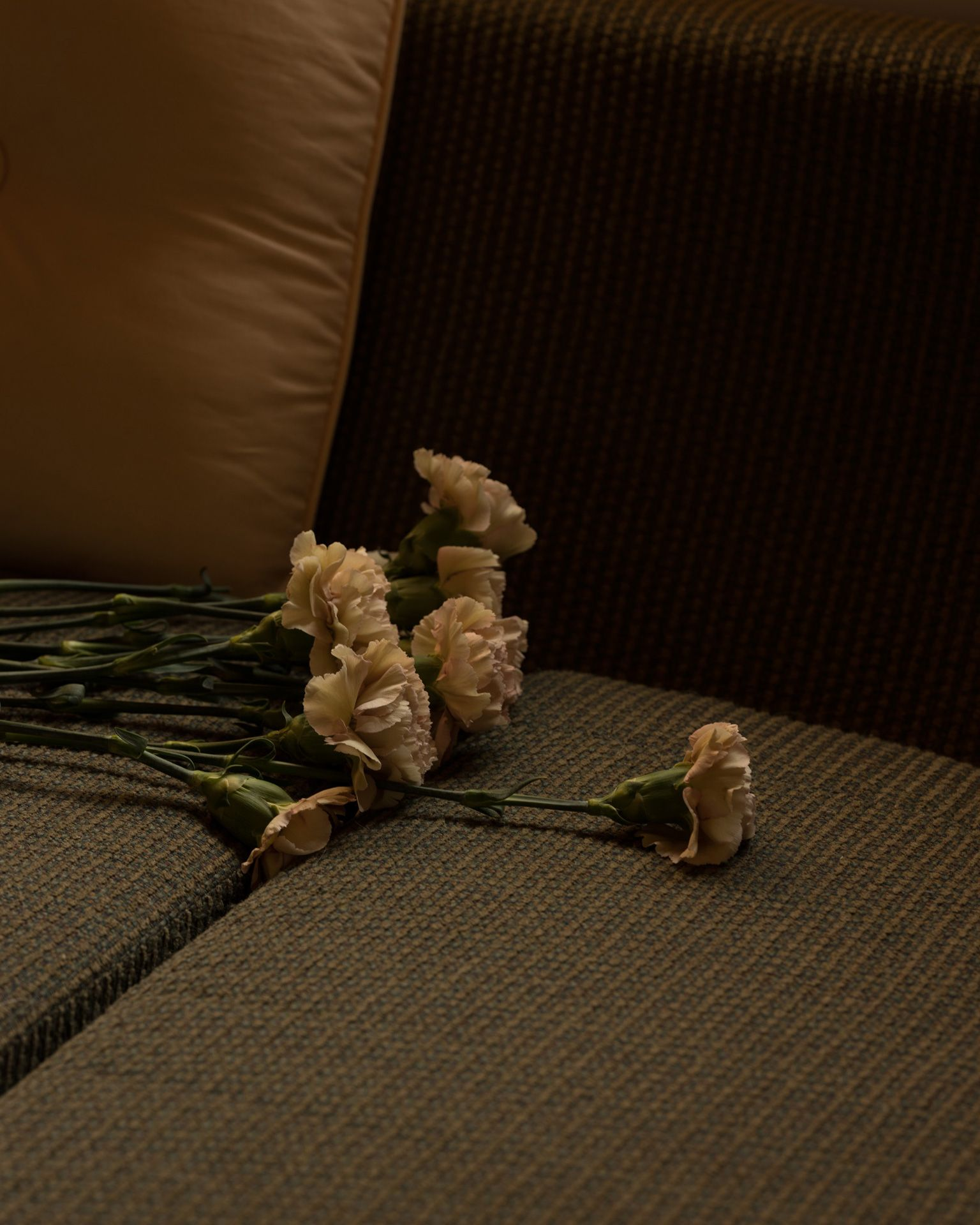 Fanny Bloom bouquet of white roses on a couch for her album Liqueur by Maxyme G. Delisle