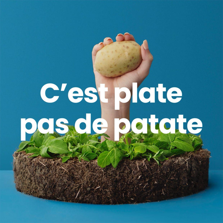 potato advertisement for Épatante Patate