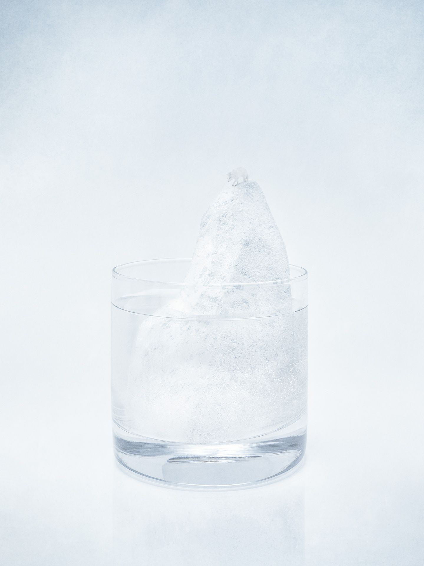glass of alcohol with miniature scenery of tall iceberg with white arctic fox at the top on white background by Mathieu Levesque