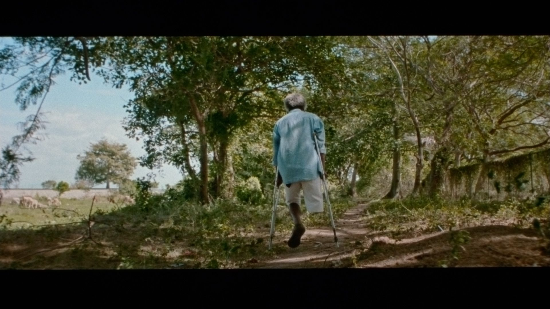disabled man missing a leg using crutches to walk on dirt trail in between trees for singer Karim Ouellet music video of La Mer A Boire filmed by Les Gamins